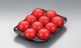 Fruits Tray/ Vegetable Tray