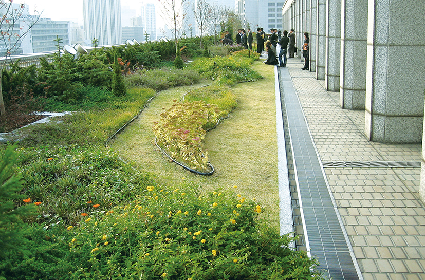 Lightweight Rooftop Greening Method